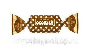 Шоколад СЛАВЯНКА 90гр Особый