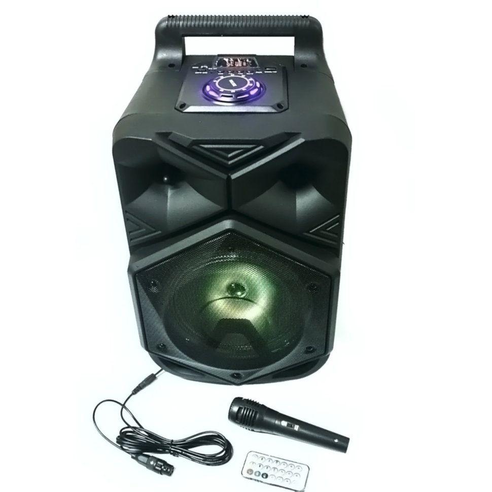 Портативная акустическая система BT-1778 с микрофоном для караоке