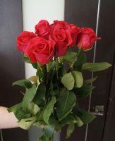 7 роз - Пинк Флойд (60 см)
