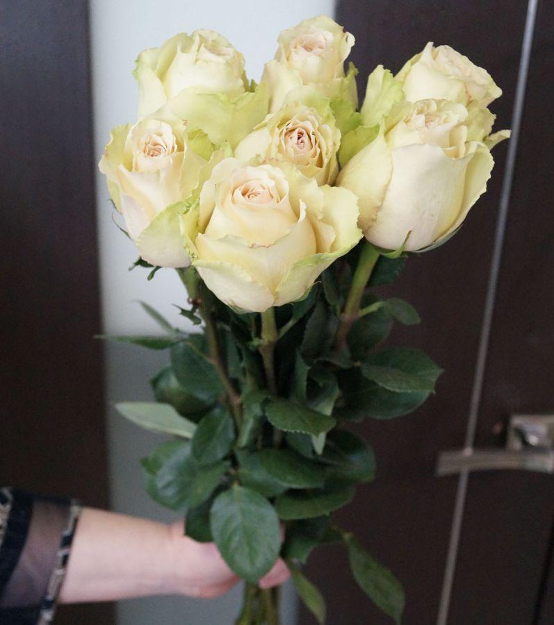 7 роз - Помпеи (60 см)
