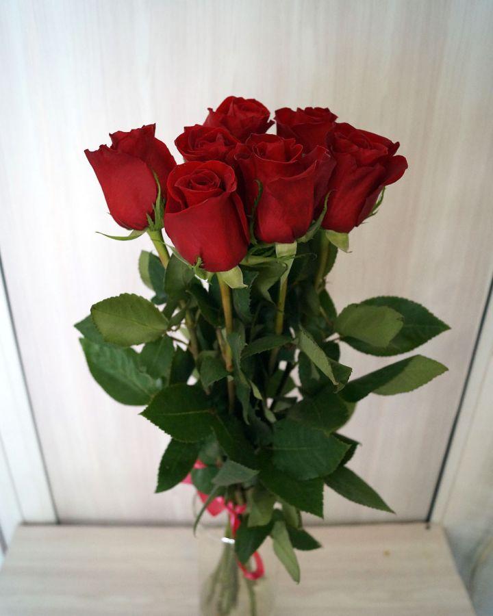 7 роз - Фридом (60 см)