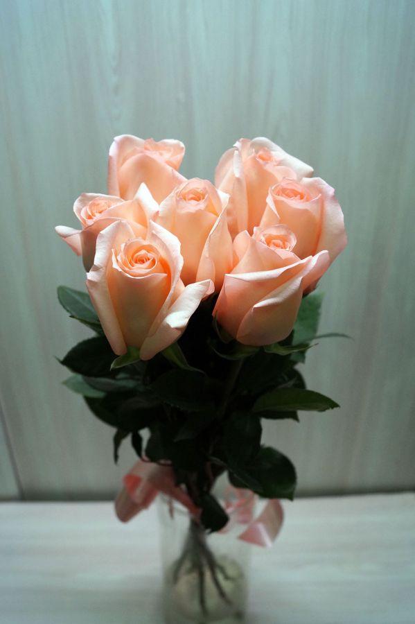 7 роз - Ангажимент (60 см)