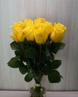 11 роз - Мохана (60 см)