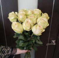 11 роз - Помпеи (60 см)