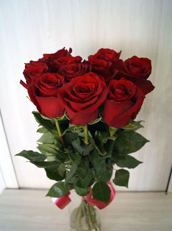 11 роз - Эксплорер (60 см)