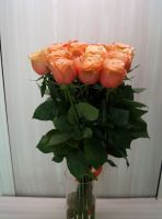 15 роз - Кохала (60 см)