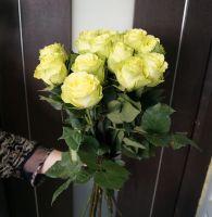 15 роз - Лимбо (60 см)