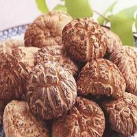 Сушеные грибы шиитаке 100 грамм