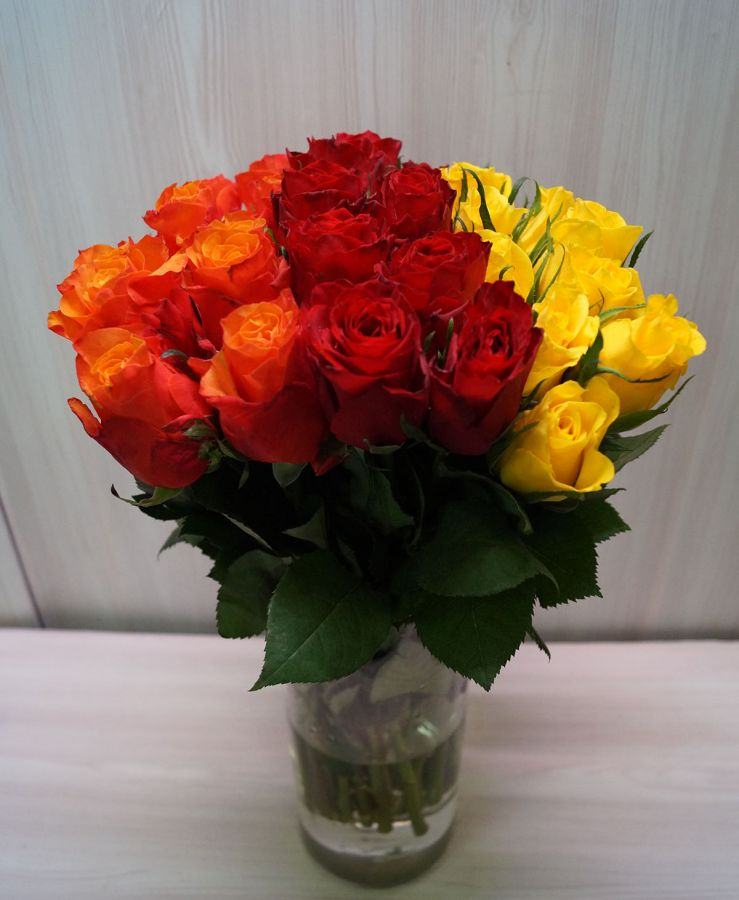 Розы Кения