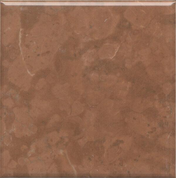 5289 | Стемма коричневый