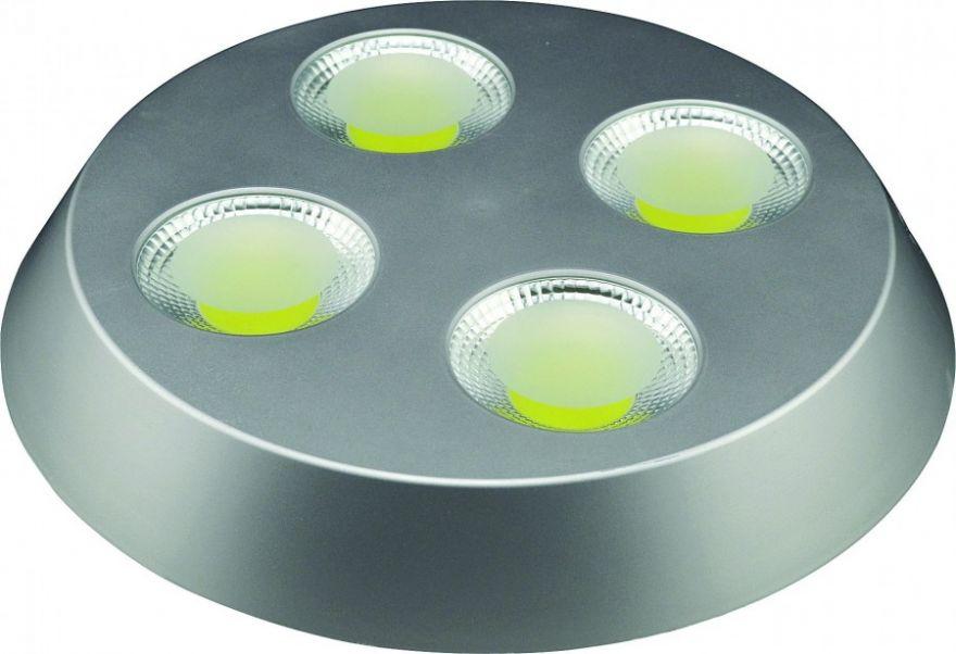 Светильник светодиодный HOROZ 4*8W Серебро HL637L