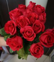 15 роз - Пинк Флойд (60 см)