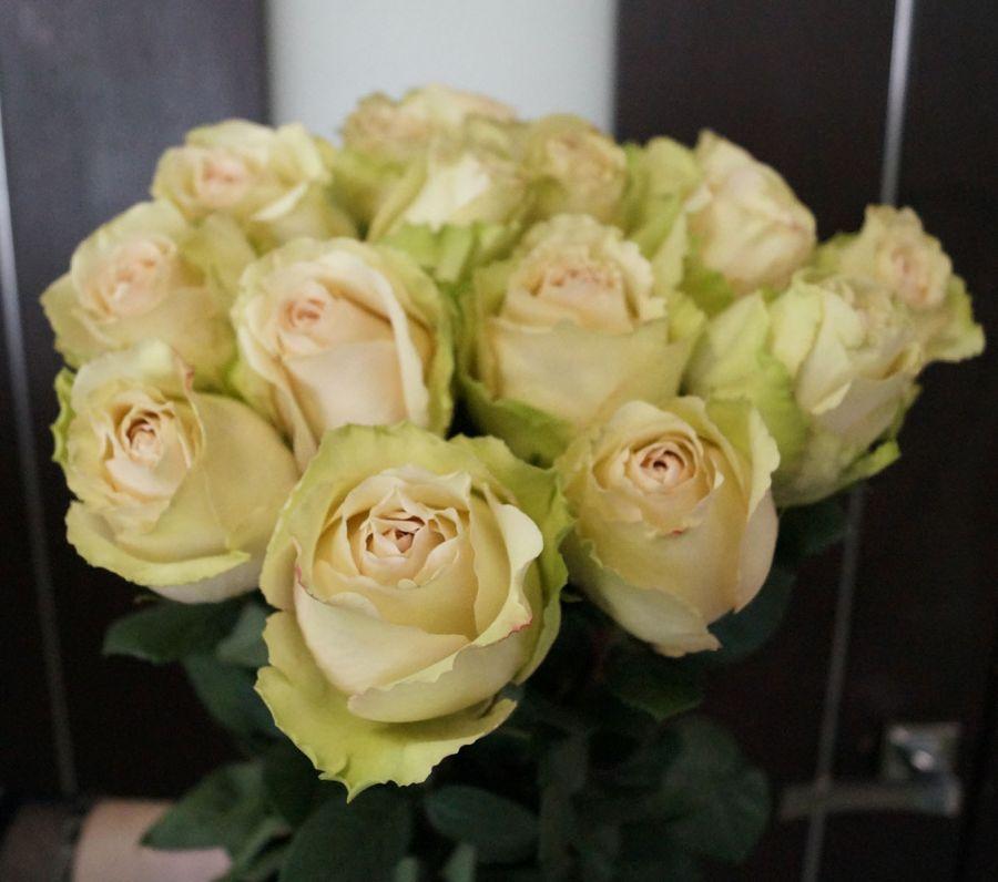 15 роз - Помпеи (60 см)