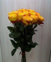 15 роз - Хай еллоу (60 см)