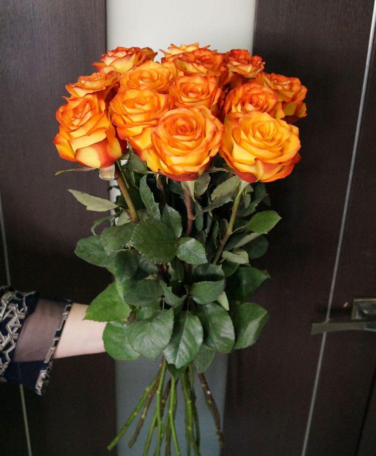 15 роз - Хай меджик (60 см)