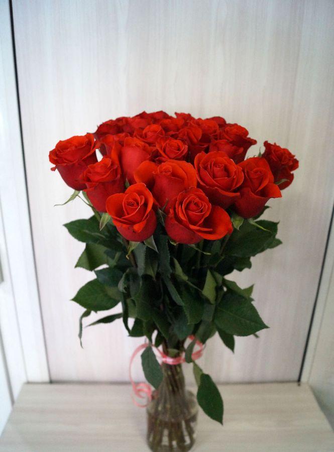 25 роз - Нина (60 см)