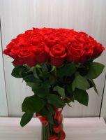 51 роза - Фридом (60 см)