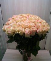 51 роза - Пинк Мондиаль (60 см)
