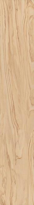 SG516200R | Олива бежевый обрезной