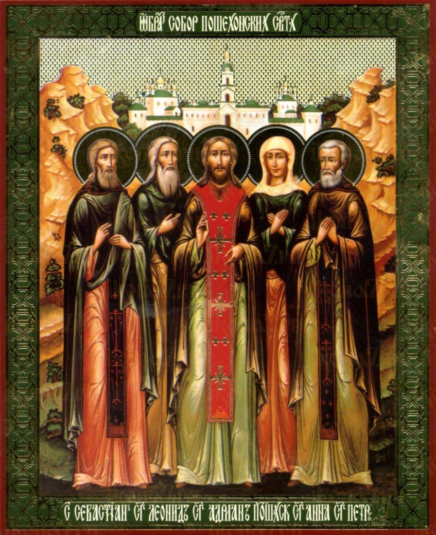 Икона Леонид Пошехонский преподобный