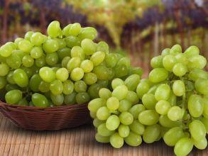 Виноград зелёный без косточек
