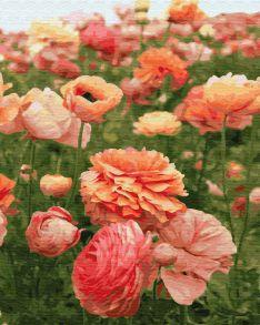 Картина по номерам «Нежный цветок» 40x50 см
