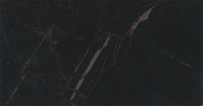 16072 | Фрагонар чёрный