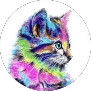 Вышивка крестиком «Разноцветная кошка» 21x21.
