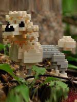 Конструктор Wisehawk & LNO Пудель 135 деталей NO. C13 Poodle Gift Series