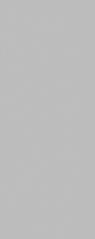 7083T | Городские цветы серый