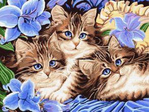 Картина по номерам «Котята в цветах» 30x40 см