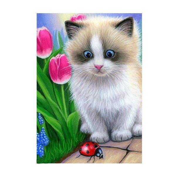 Картина по номерам Набор юного художника.Маленький котенок 20*30см