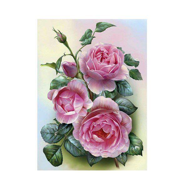 Картина по номерам Набор юного художника.Розовые розы 20*30см KH0320