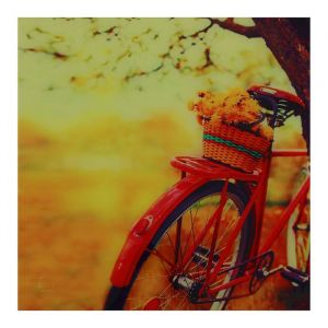 "Картина на стекле ""Велосипед"""