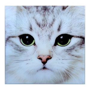 """Картина на стекле """"Взгляд кота"""""""