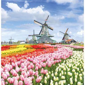 """Картина на подрамнике """"Поле тюльпанов"""" 30*30 см   4194716"""