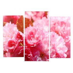 "Картина модульная на подрамнике  ""Пионы розовые"" (2-25х50, 30х60см)  80х60см   4685373"