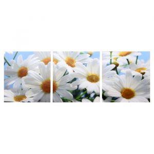 """Модульная картина """"Белые ромашки"""" (3-35х35) 35х105 см 4983640"""