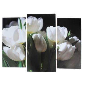 """Модульная картина """"Белые тюльпаны""""  (2-25х52; 1-30х60) 60х80 см   3981600"""