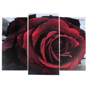 "Модульная картина ""Бутон алой розы""  (2-25х52; 1-30х60) 60х80 см   3981635"
