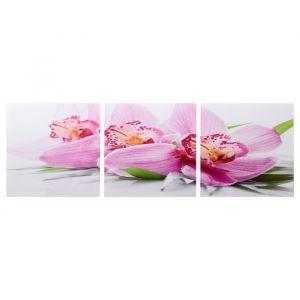 """Модульная картина """"Розовые орхидеи"""" (3-35х35) 35х105 см 4983611"""