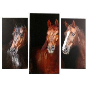 "Модульная картина ""Три лошадки"" (2-25х50, 30х60см) 60х80 см   4675794"
