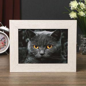 """Ключница """"Черный кот"""" 18х23х5 см светлая   4322980"""