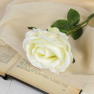"""Цветы искусственные """"Роза бланка"""" 7,5*55 см, белая   3933361"""