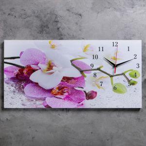 """Часы настенные, серия: Цветы, на холсте """"Орхидеи"""", 40х76  см, микс 2045163"""