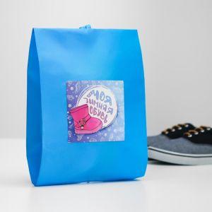"""Мешок для обуви """"Моя зимняя обувь""""  Для девочки   4452157"""