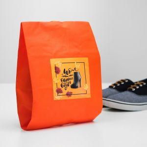 """Мешок для обуви """"Моя любимая осенняя обувь""""  женский  4452170"""
