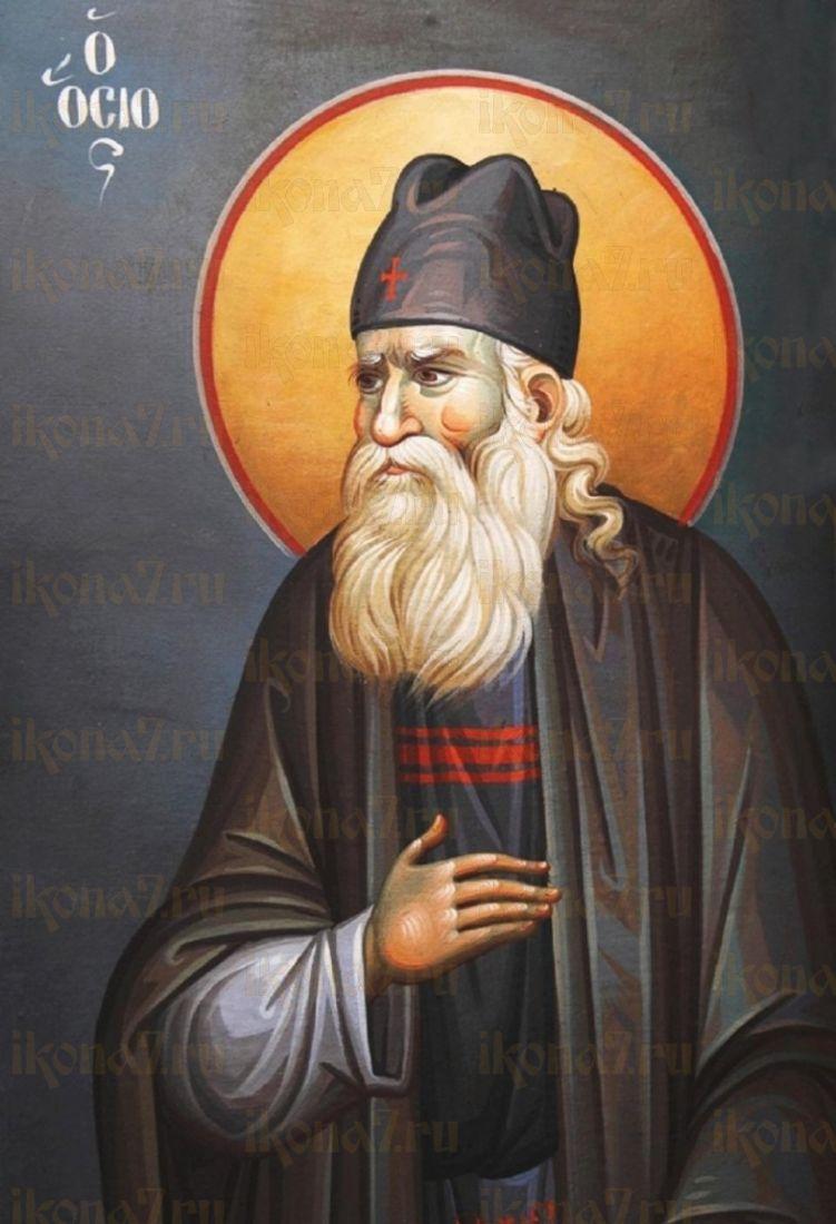 Икона Иустин Сербский преподобный