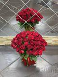 Букет из 51 розы красной