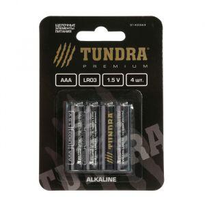 Батарейка алкалиновая TUNDRA, AAA ,LR3, блистер, 4 шт 3142263